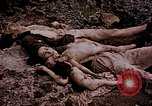 Image of atrocity victims Tinian Island Mariana Islands, 1944, second 26 stock footage video 65675050865