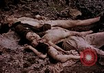 Image of atrocity victims Tinian Island Mariana Islands, 1944, second 27 stock footage video 65675050865