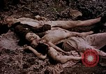 Image of atrocity victims Tinian Island Mariana Islands, 1944, second 28 stock footage video 65675050865