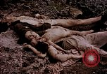 Image of atrocity victims Tinian Island Mariana Islands, 1944, second 30 stock footage video 65675050865