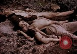 Image of atrocity victims Tinian Island Mariana Islands, 1944, second 31 stock footage video 65675050865