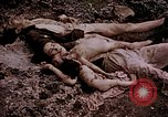 Image of atrocity victims Tinian Island Mariana Islands, 1944, second 34 stock footage video 65675050865