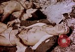 Image of atrocity victims Tinian Island Mariana Islands, 1944, second 36 stock footage video 65675050865