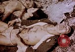 Image of atrocity victims Tinian Island Mariana Islands, 1944, second 37 stock footage video 65675050865