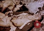 Image of atrocity victims Tinian Island Mariana Islands, 1944, second 40 stock footage video 65675050865
