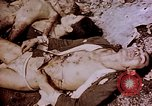 Image of atrocity victims Tinian Island Mariana Islands, 1944, second 42 stock footage video 65675050865