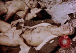 Image of atrocity victims Tinian Island Mariana Islands, 1944, second 43 stock footage video 65675050865