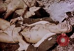 Image of atrocity victims Tinian Island Mariana Islands, 1944, second 44 stock footage video 65675050865