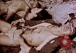 Image of atrocity victims Tinian Island Mariana Islands, 1944, second 45 stock footage video 65675050865
