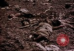 Image of atrocity victims Tinian Island Mariana Islands, 1944, second 51 stock footage video 65675050865
