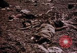 Image of atrocity victims Tinian Island Mariana Islands, 1944, second 54 stock footage video 65675050865