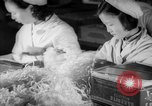 Image of Bakerite Company Shanghai China, 1938, second 56 stock footage video 65675050892
