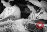 Image of Bakerite Company Shanghai China, 1938, second 57 stock footage video 65675050892