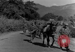 Image of 475th Infantry Burma, 1944, second 25 stock footage video 65675050911