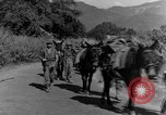 Image of 475th Infantry Burma, 1944, second 32 stock footage video 65675050911