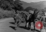 Image of 475th Infantry Burma, 1944, second 34 stock footage video 65675050911