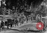Image of 475th Infantry Burma, 1944, second 4 stock footage video 65675050913