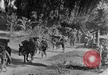 Image of 475th Infantry Burma, 1944, second 8 stock footage video 65675050913