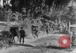 Image of 475th Infantry Burma, 1944, second 10 stock footage video 65675050913