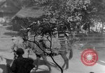 Image of 475th Infantry Burma, 1944, second 15 stock footage video 65675050913