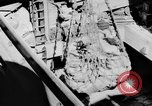 Image of DUKWs United States USA, 1943, second 38 stock footage video 65675050919