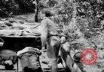 Image of DUKWs United States USA, 1943, second 60 stock footage video 65675050924