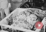Image of production of chewing gums United States USA, 1919, second 37 stock footage video 65675050979