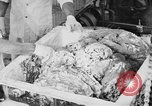 Image of production of chewing gums United States USA, 1919, second 40 stock footage video 65675050979