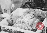 Image of production of chewing gums United States USA, 1919, second 42 stock footage video 65675050979