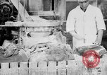Image of production of chewing gums United States USA, 1919, second 60 stock footage video 65675050979