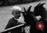 Image of baby animals Germany, 1960, second 13 stock footage video 65675051183