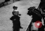 Image of baby animals Germany, 1960, second 15 stock footage video 65675051183