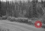 Image of McKinley Park Alaska United States USA, 1925, second 29 stock footage video 65675051277