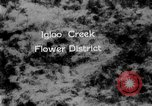 Image of igloo creek Alaska United States USA, 1925, second 1 stock footage video 65675051279