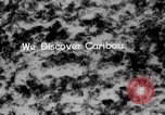 Image of herd of Caribou Alaska USA, 1929, second 43 stock footage video 65675051280