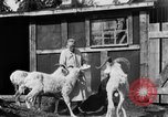 Image of Mount McKinley Alaska United States USA, 1925, second 34 stock footage video 65675051284