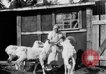 Image of Mount McKinley Alaska United States USA, 1925, second 36 stock footage video 65675051284
