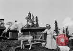 Image of Mount McKinley Alaska United States USA, 1925, second 41 stock footage video 65675051284