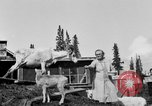 Image of Mount McKinley Alaska United States USA, 1925, second 43 stock footage video 65675051284
