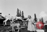 Image of Mount McKinley Alaska United States USA, 1925, second 44 stock footage video 65675051284