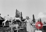 Image of Mount McKinley Alaska United States USA, 1925, second 46 stock footage video 65675051284