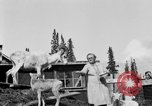 Image of Mount McKinley Alaska United States USA, 1925, second 47 stock footage video 65675051284