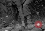 Image of United States 127th Field Artillery Regiment Saint Lo France, 1944, second 56 stock footage video 65675051314
