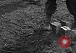 Image of road cleared of land mines using explosive charges Emelie France, 1944, second 37 stock footage video 65675051321