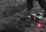 Image of road cleared of land mines using explosive charges Emelie France, 1944, second 40 stock footage video 65675051321