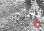 Image of road cleared of land mines using explosive charges Emelie France, 1944, second 42 stock footage video 65675051321