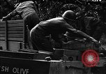 Image of United States 87th Chemical Mortar Battalion Carentan France, 1944, second 16 stock footage video 65675051323