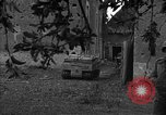 Image of United States 87th Chemical Mortar Battalion Carentan France, 1944, second 50 stock footage video 65675051323