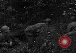 Image of United States 87th Chemical Mortar Battalion Carentan France, 1944, second 6 stock footage video 65675051324