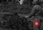 Image of United States 87th Chemical Mortar Battalion Carentan France, 1944, second 56 stock footage video 65675051326